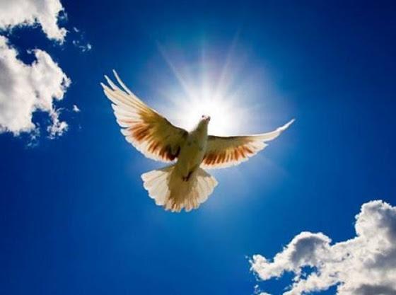 Только Христос удовлетворят требования закона Божьего