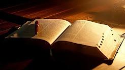 Урок 46. Число и стан сынов Израилевых