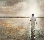 КАКОВА ПШЕНИЦА, ДОСТОЙНАЯ ЖИТНИЦЫ БОЖЬЕЙ?