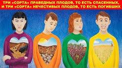 Три «сорта» праведных плодов, то есть спасённых, и три «сорта» нечестивых плодов, то есть погибших